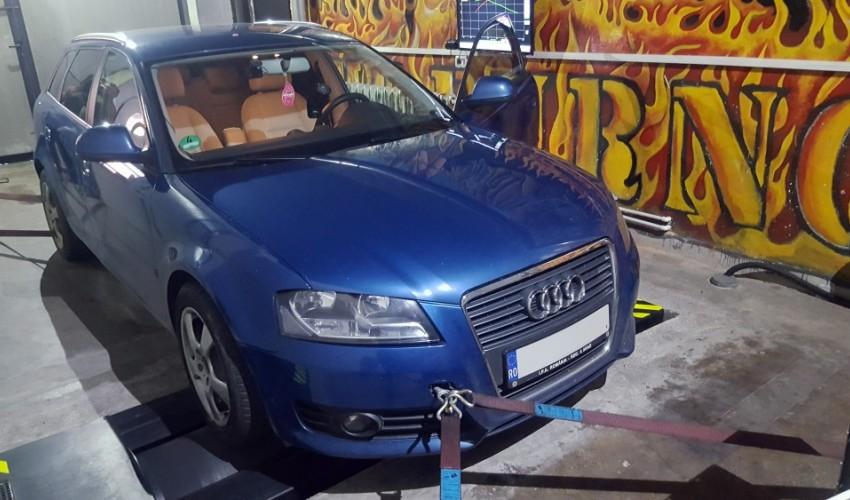 Audi A3 8P 1.6TDI